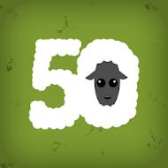 50 Sheep