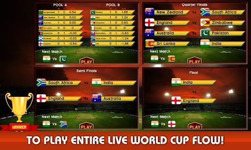 ファンシークリケットワールドカップ2015