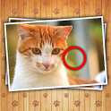 Find Photo Differences - Cats icon