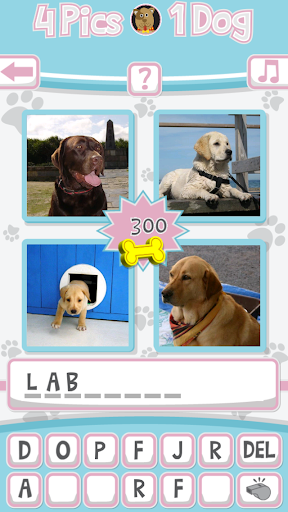 4 Pics 1 Dog What's the Dog