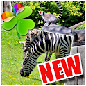 Zoo Animal - GO Launcher Theme icon