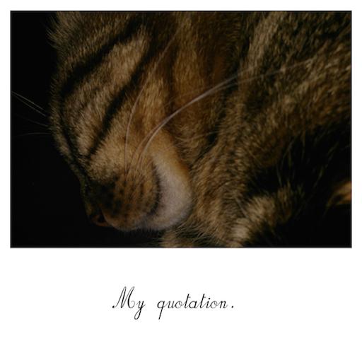 My Quotation 攝影 App LOGO-APP試玩