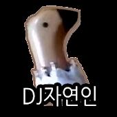 DJ자연인