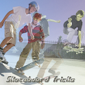 Skateboard Tricks logo
