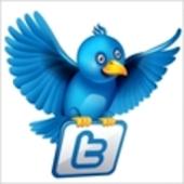 Tweetalator Twitter Translator
