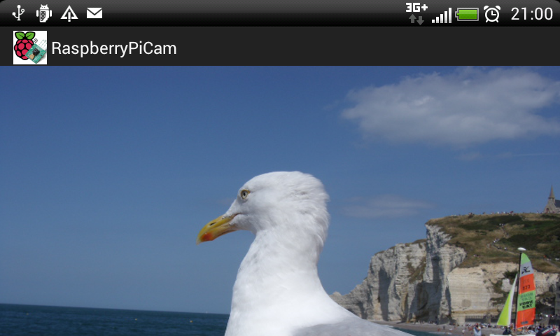 Raspberry PiCam- screenshot