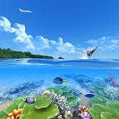 Tropical Island360°