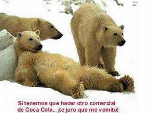 Imagenes Humor Compartir - screenshot