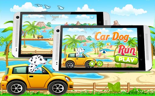 Car Dog Run