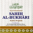 Hadith Sahih Bukhari - English icon