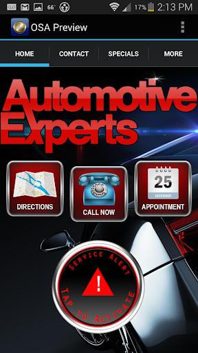 Automotive Experts
