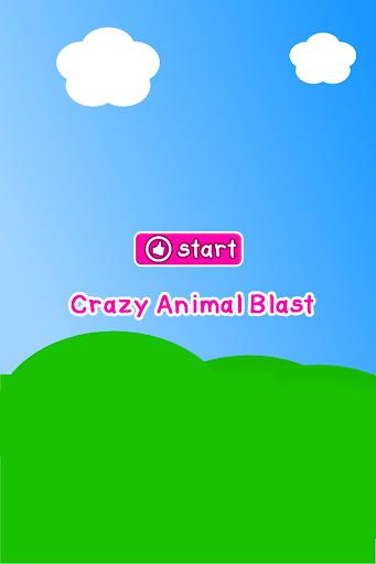 Cool Animal Game