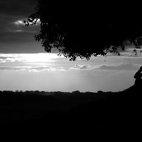 Lonely sunset by Suaib Akhter - Black & White Landscapes ( natural light, bangladesh, sun set, landscape, natural, rajshahi )