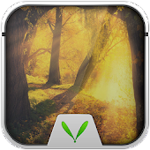 Slient Forest Locker Theme