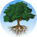 Local Sharing Tree Deal Site icon