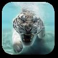 Tiger Live Wallpaper download