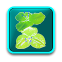 Garden: Flowers free logo