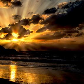 Rays by Assi Dvilanski - Landscapes Sunsets & Sunrises ( sunset, beach, rays )