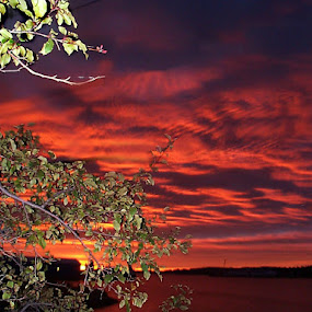 Colorful Sky by Geoff Gosse - Landscapes Sunsets & Sunrises ( sky, newfoundland, colorful, sunrise, landscape )