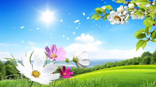 Fresh Spring HD Live Wallpaper