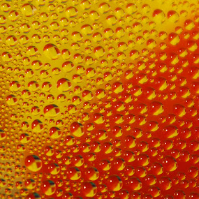 drops by Keren Woodgyer - Abstract Water Drops & Splashes ( colour, water, red yellow, nobody, photograph, background, drops )