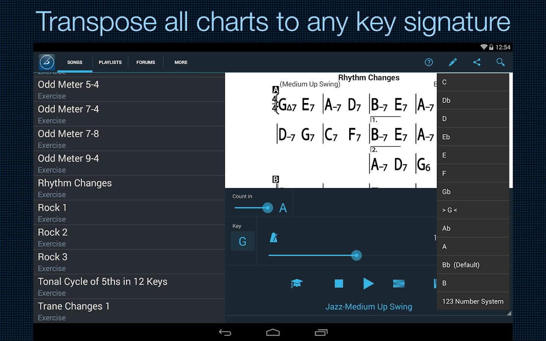 iReal Pro MusicBook-PlayAlong - screenshot