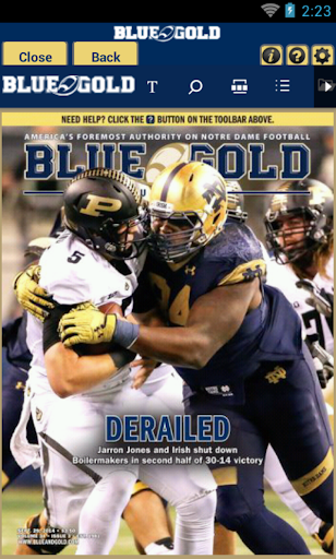 Blue and Gold Illustrated