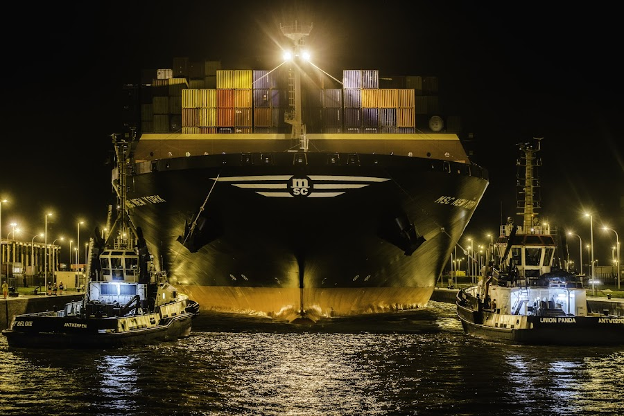 MSC NEW YORK by Luc De Cock - Transportation Boats ( new, vessel, ship, container, york, msc )