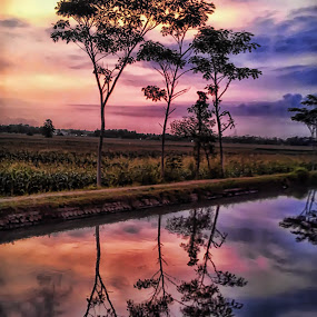 Refleksi Sawah by Randi Pratama M - Instagram & Mobile Android ( reflection, waterscape,  )