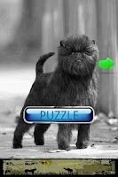 Screenshot of Dog Puzzle: Affenpinscher