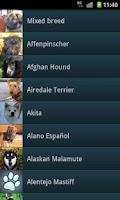 Screenshot of Dog Breeds