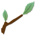 Project BudBurst Mobile logo