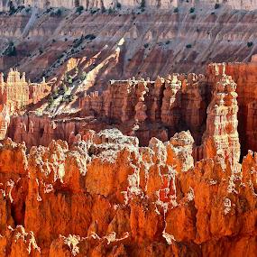Bryce Canyon by Ronald Susaya - Uncategorized All Uncategorized ( utah, sunset, hoodos, bryce,  )