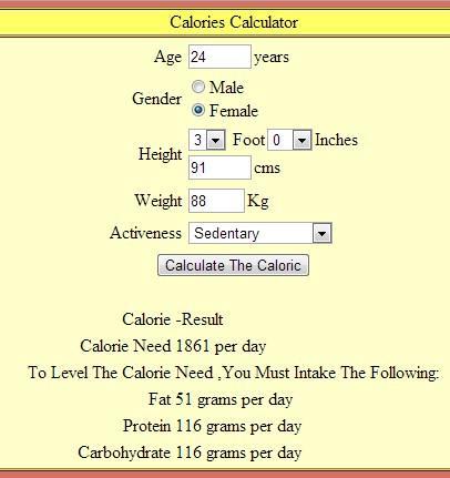Calorie Counter Calculator