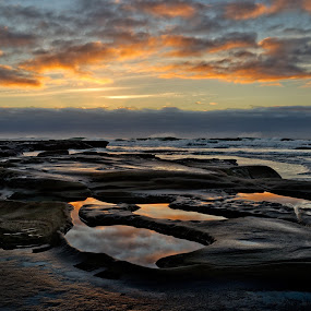 Bicheno reflections by Matt Green - Landscapes Sunsets & Sunrises ( d800, reflections, seascape, sunrise, rock pool, landscape )