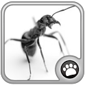 Ant Smasher best cool icon