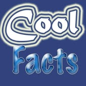 10,000+ Cool Facts