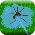 Insect Fighter icon