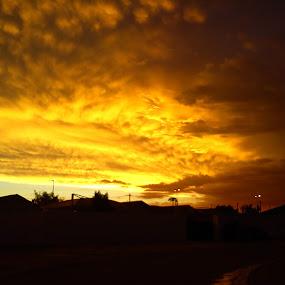 Golden Sky by Arun Prasanna - Landscapes Cloud Formations ( #sky #golden #gold sky #clouds )