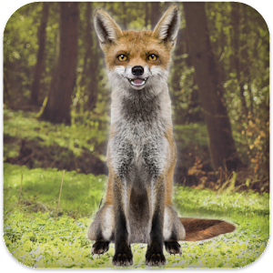 Talking Fox Icon