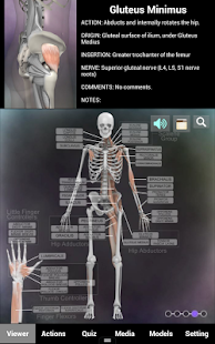 Muscle and Bone Anatomy 3D- screenshot thumbnail