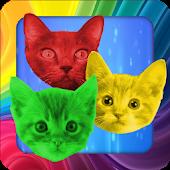 Cat Swap! Kitten Brain Puzzle