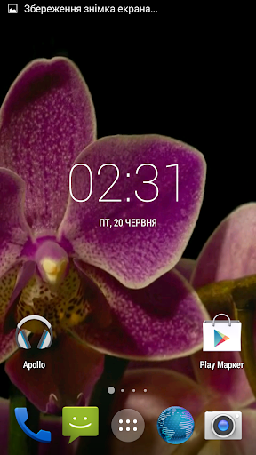 Orchids flowers Live Wallpaper