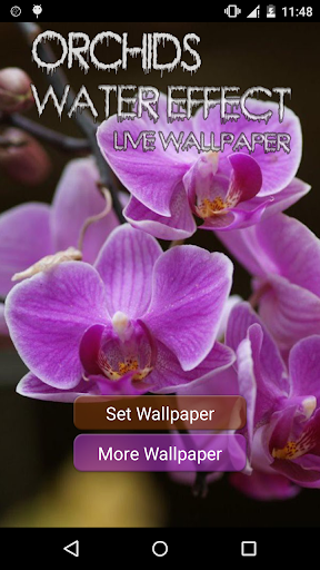 Orchids Water Effect LWP