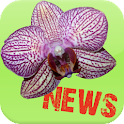 Orchid News icon