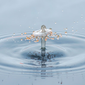 by Cikgu Al - Abstract Water Drops & Splashes