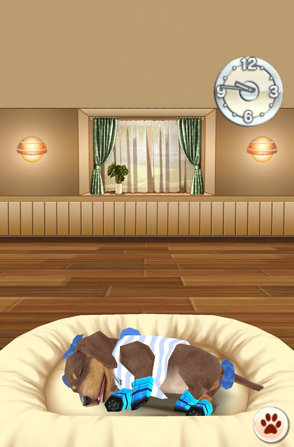 My Dog Room Free Screenshot