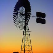 Amarillo Tourism