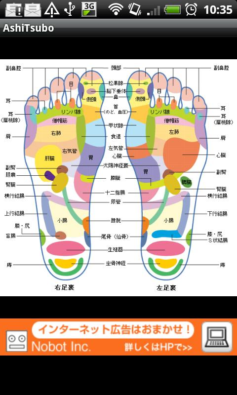 Foot Reflexology- screenshot