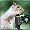 Animalphotos icon